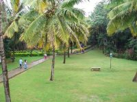 landscaped-lawns.jpg
