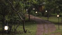 Garden_Trail_One_Native_Village_Bangalore_tgzzfn.jpg