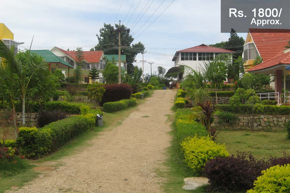Peter's Park Resort