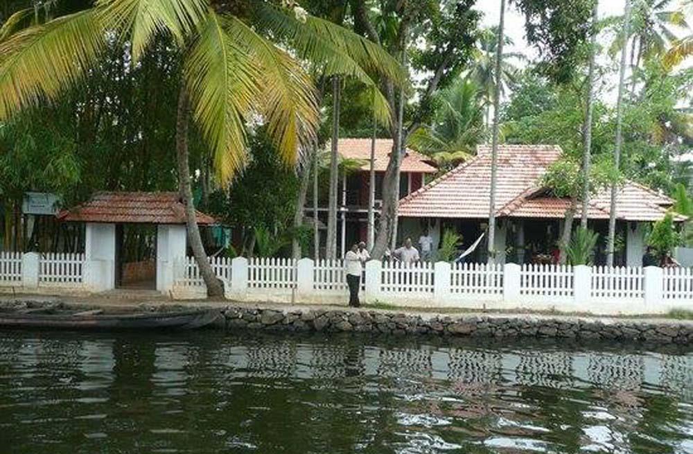Bamboo Lagoo 2
