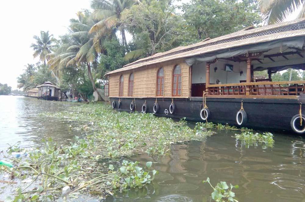 Bamboo Lagoo 3