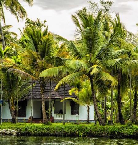 Palmgrove Lake Resort 1