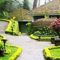 The Tall Tree Resort